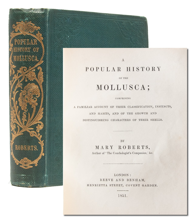 A Popular History of the Mollusca; Comprising a Familiar Account of their Classification,...