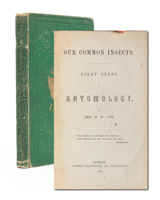 Our Common Insects. First Steps in Entomology. Rosalinda Alicia Cox, Mrs. E. W. Cox.