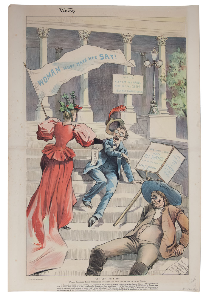 Get Off the Steps: Woman Suffrage Takes Precedence. Women's Suffrage, The Wasp.