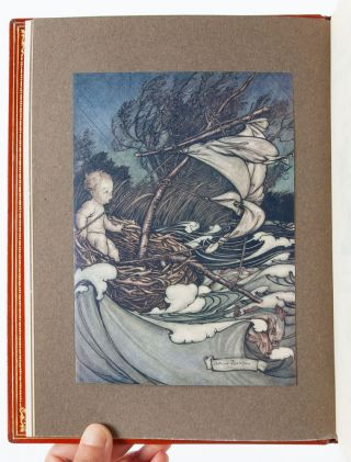 Image 6 of 9 for Peter Pan in Kensington Gardens (Signed by Rackham