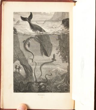 Image 5 of 9 for Twenty Thousand Leagues Under the Seas