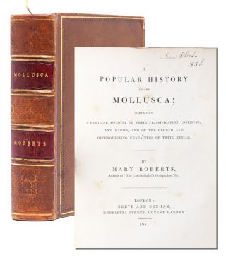 Image 1 of 9 for A Popular History of the Mollusca; Comprising a Familiar Account of their...