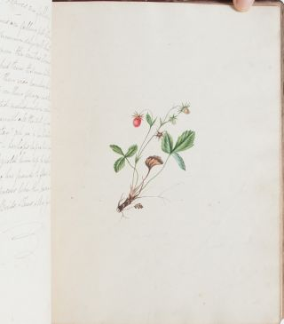 Image 4 of 7 for 19th century literary and artistic commonplace book, shared by a small community...