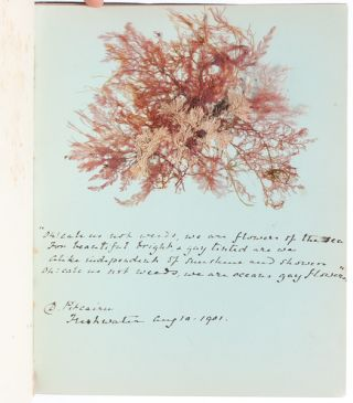 Image 7 of 8 for Literary and Artistic Commonplace Book of a Young Woman at the Turn of the Century