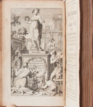 Image 4 of 8 for The Dutch Gardener: or, the Compleat Florist