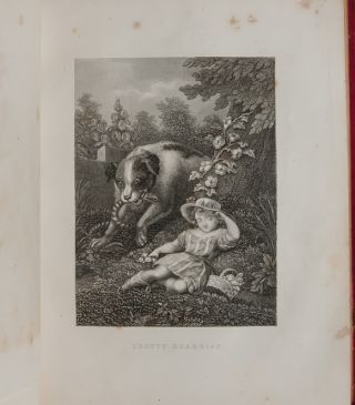 Image 6 of 9 for Literary commonplace book and friendship album of a 19th century California girl...