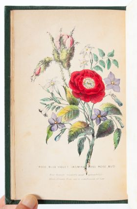 The Language of Flowers. The Floral Offering: A Token of Affection and Esteem; Comprising The Language and Poetry of Flowers. With Coloured Illustrations, from Original Drawings