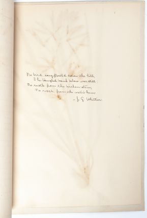 Image 4 of 8 for State Normal Herbarium, a collection of botanical research, sketches, and samples