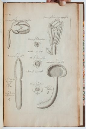 Image 5 of 9 for The Anatomy of Plants. With an Idea of a Philosophical History of Plants, and...
