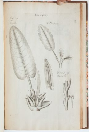 Image 6 of 9 for The Anatomy of Plants. With an Idea of a Philosophical History of Plants, and...